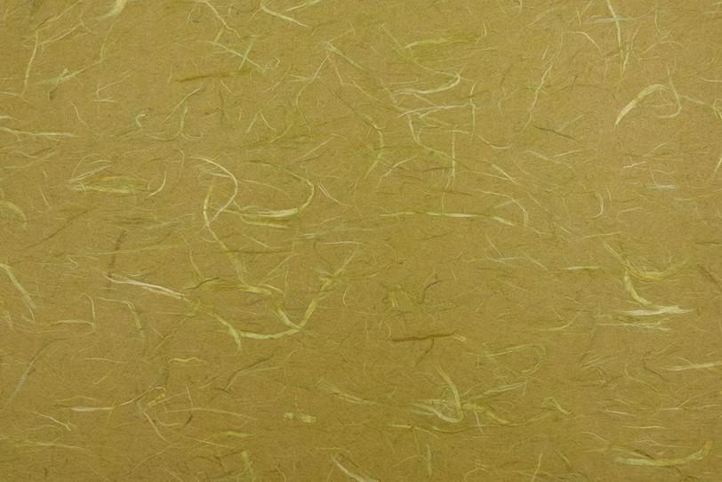 青朽葉色に白い楮の繊維がある和紙の写真画像