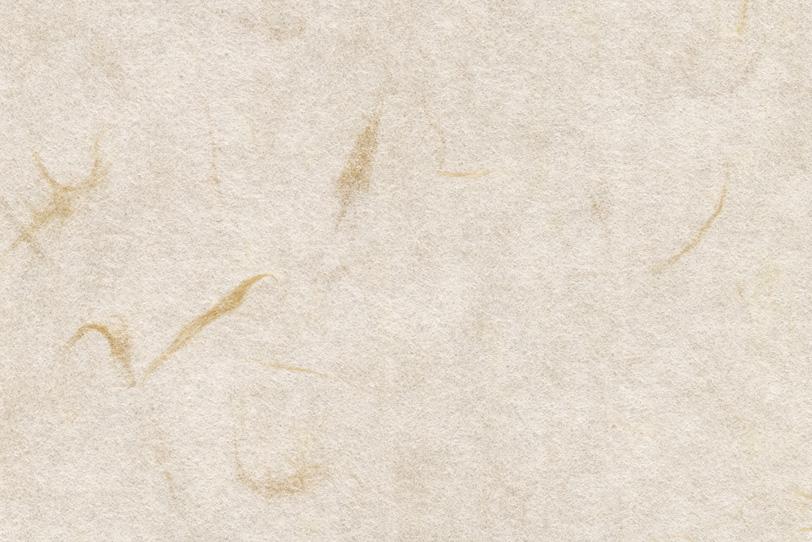大きな楮筋のある生成色の和紙の写真画像