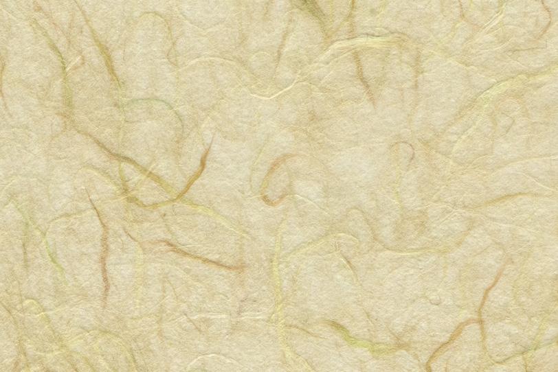 茶色楮が入った薄い麦藁色の雲龍和紙の写真画像