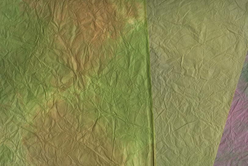 枯れかけた葉の様な和紙の背景の写真画像