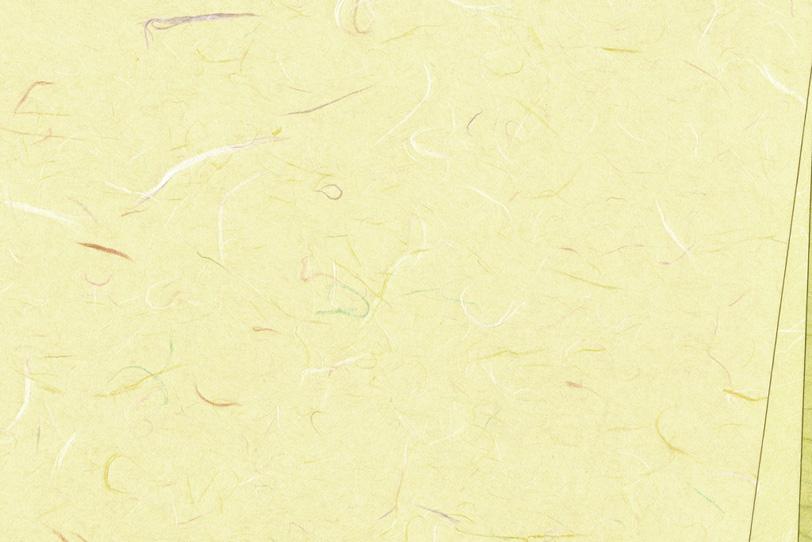 黄色がかった白の和紙背景の写真画像