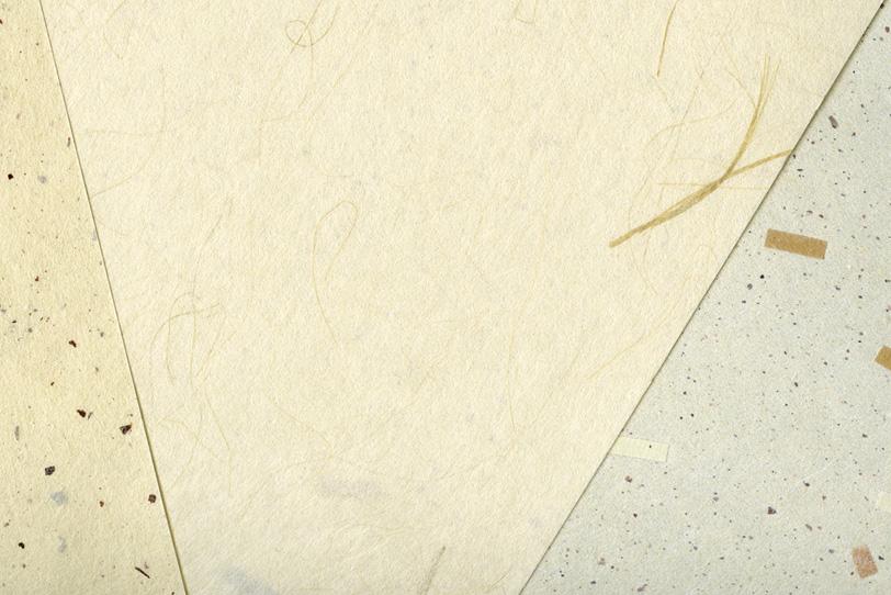 皮と筋と模様のある三枚の和紙の写真画像