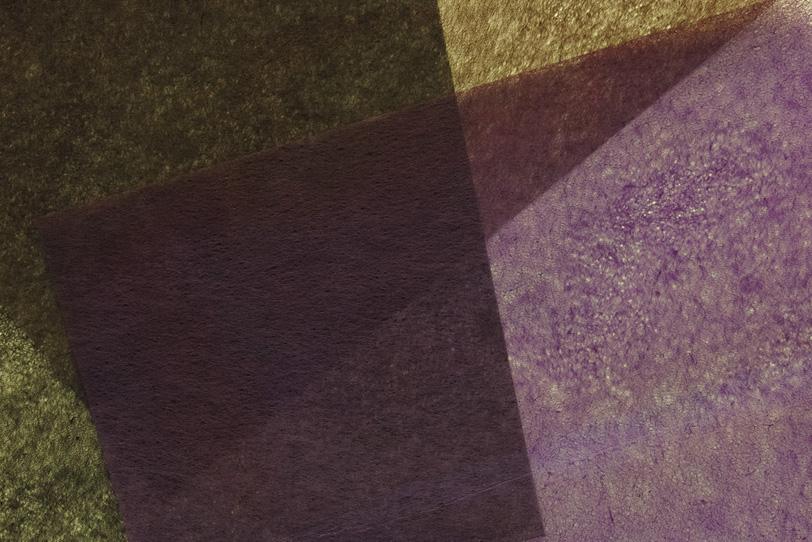秋をイメージする茶系の極薄和紙の写真画像