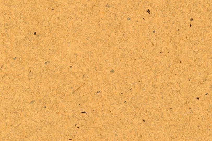 狐色の楮皮が入った和紙の写真画像