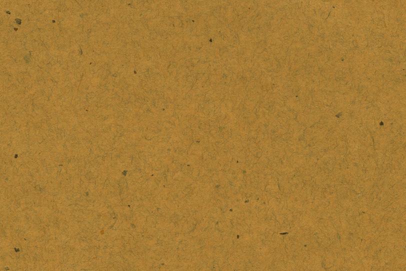 黄雀茶色の皮と繊維がある和紙の写真画像