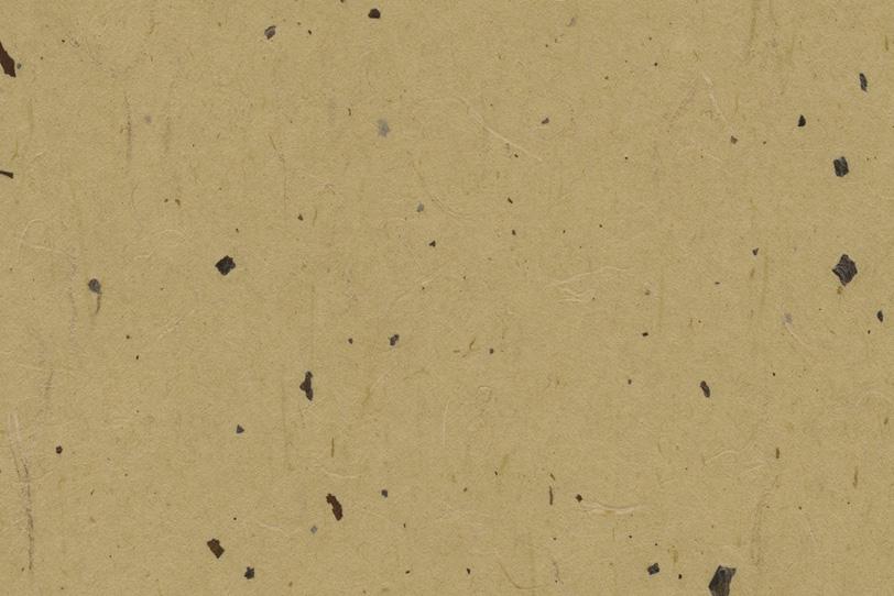 楊梅色の皮と筋のある和紙の写真画像