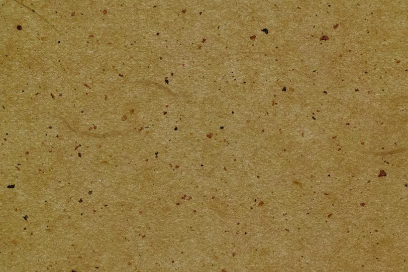 木蘭色の楮の皮と繊維のある和紙の写真画像