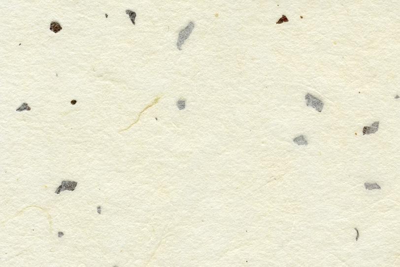 白色の楮皮と楮筋が入った和紙の写真画像