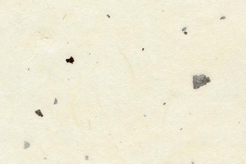 白色の地に大きな黒皮を入れた和紙の写真画像