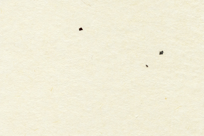 白の地紙に三つの黒皮が入った和紙の写真画像