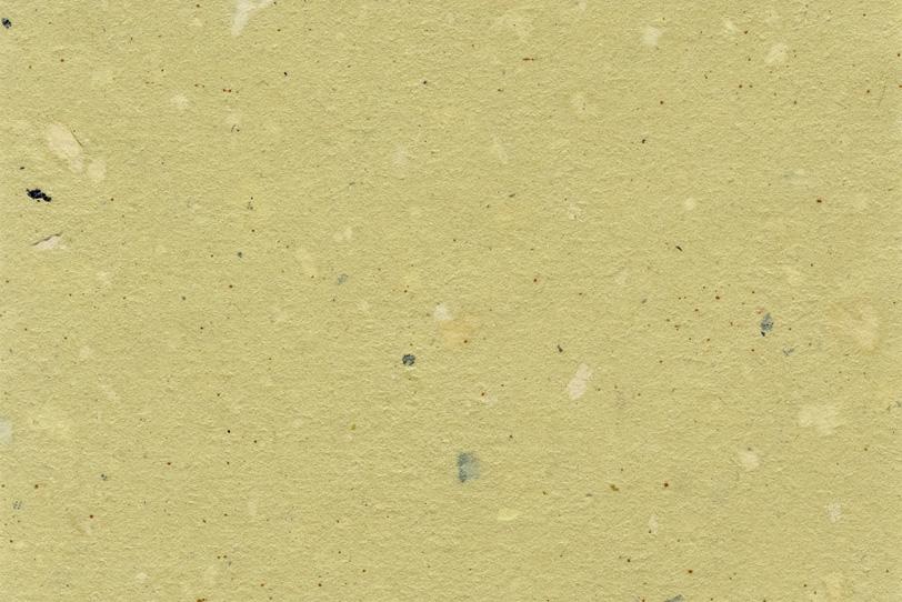 淡黄色の黒皮と白斑点がある和紙の写真画像