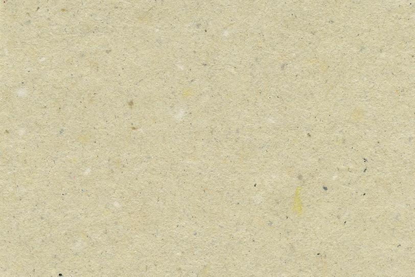 生成色のザラザラとした皮入り和紙の写真画像