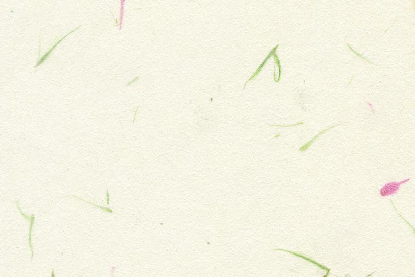 白百合色の紙に草模様がある和紙の写真画像