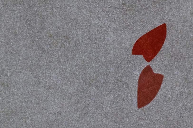灰色の大きな花びら模様がある和紙の写真画像