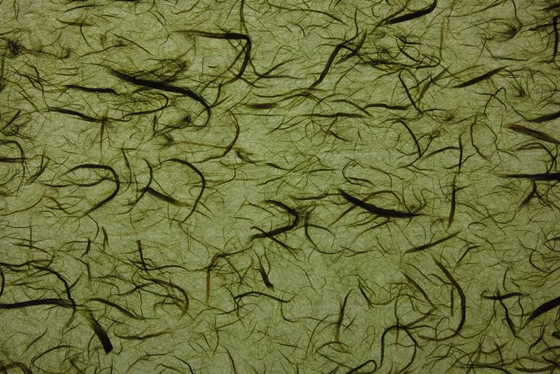 裏柳色の紙に黒筋の目立つ雲竜和紙の写真画像