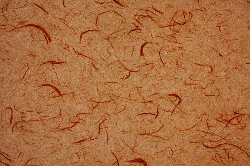 江戸茶色の紙に赤筋が入った雲龍和紙の写真画像