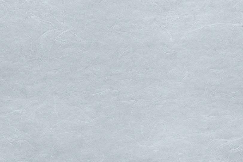 白銅色の飾り気のない雲竜和紙の写真画像