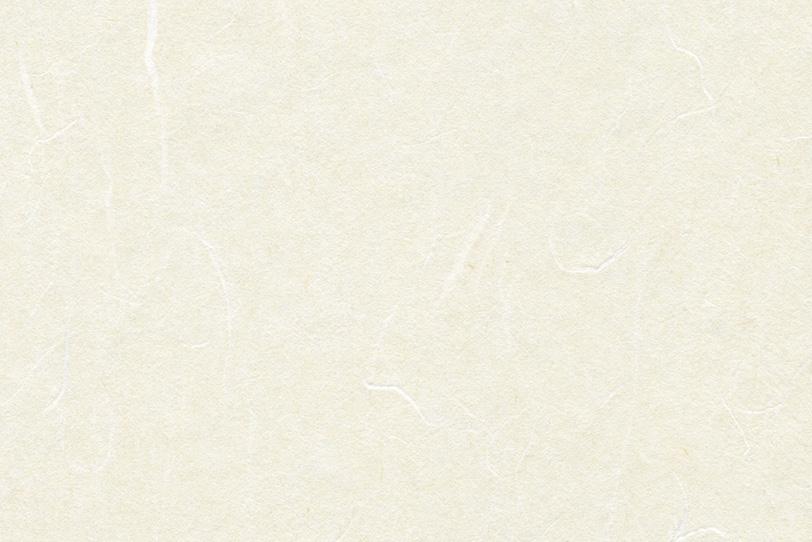 白練色の清楚な感じの和紙の写真画像
