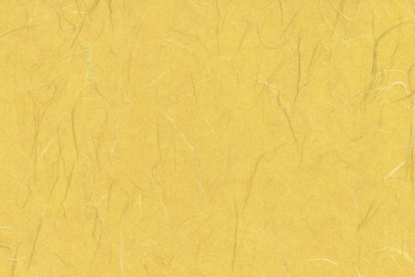 花葉色の楮繊維入り和紙の写真画像