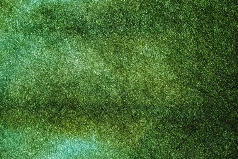 緑色のぼかしが入った色染め和紙の写真画像
