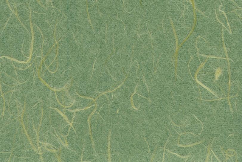 風趣に富んだ虫襖色の和紙の写真画像