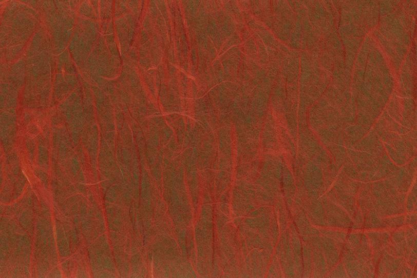 赤雲竜柄の唐茶色和紙の写真画像