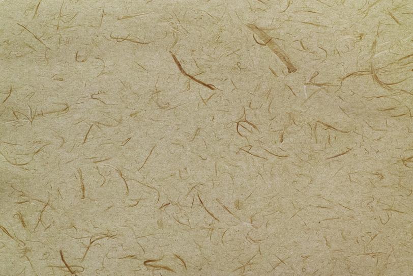 大小の繊維を鏤めた白橡色和紙の写真画像