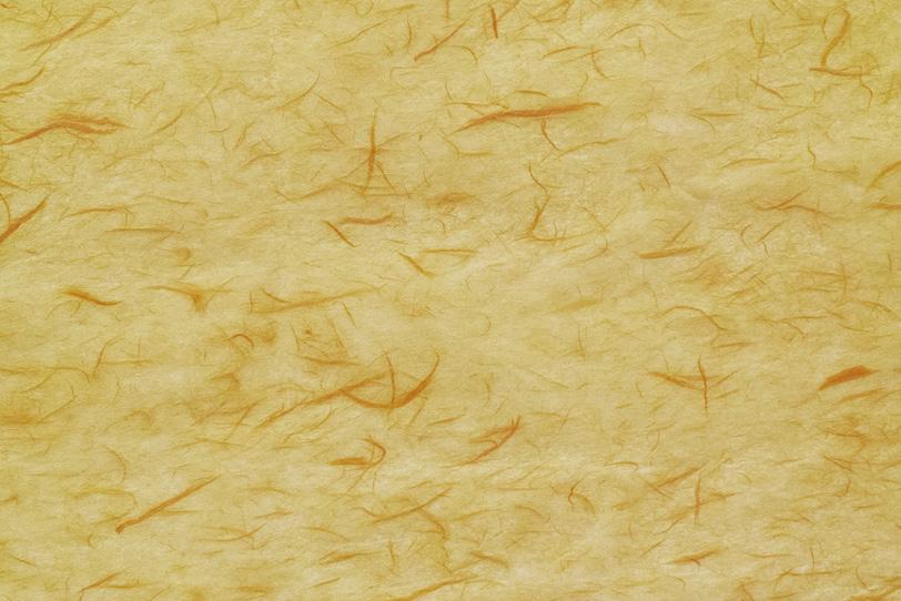 茶筋を漉き入れた蒸栗色和紙の写真画像