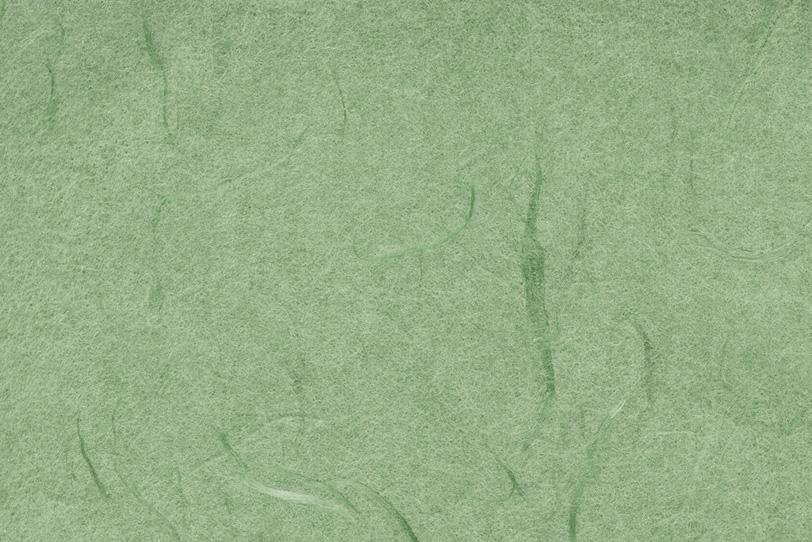 草のような雲竜柄の柳染色和紙の写真画像
