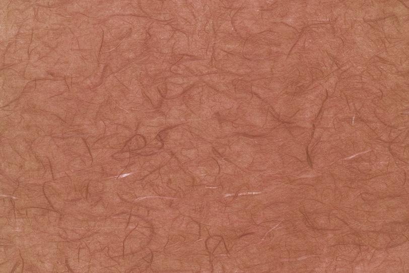 雲竜柄の趣深い遠州茶色和紙の写真画像