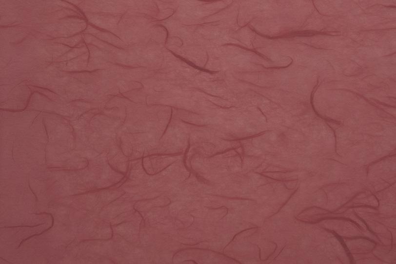 雲竜柄の風情ある小豆色和紙の写真画像