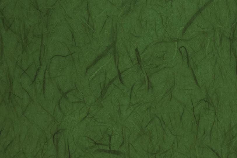 雲竜柄の千歳緑色和紙の写真画像