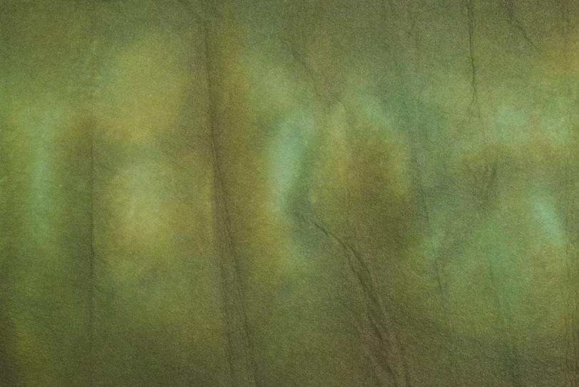葉のような彩りの暈染和紙の写真画像