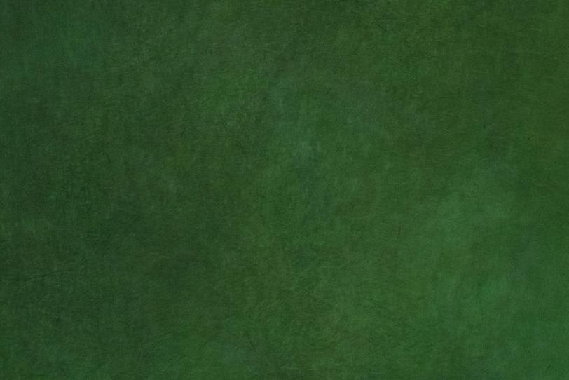 深い森の様な彩りの千歳緑色和紙の写真画像
