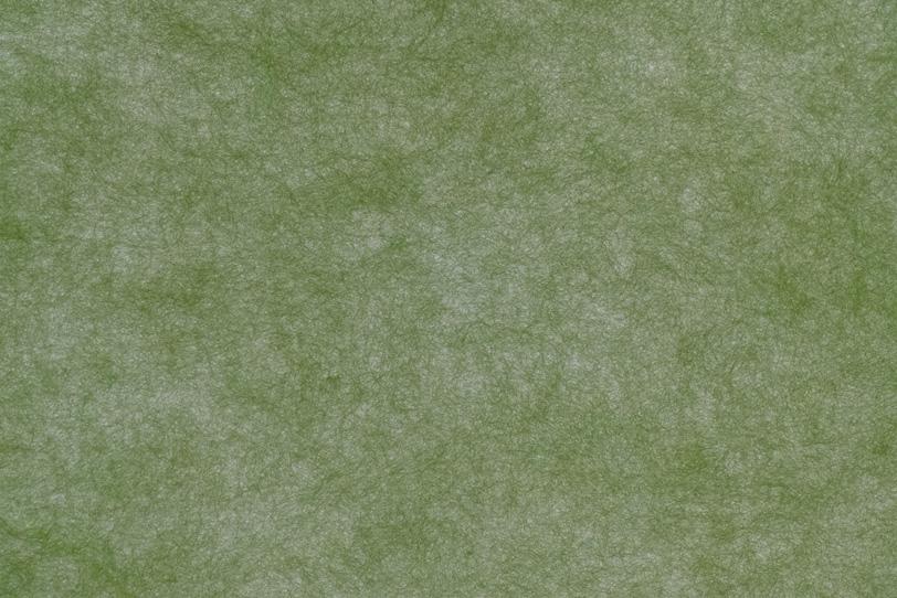 苔色が灰色の地に暈ける薄口和紙の写真画像