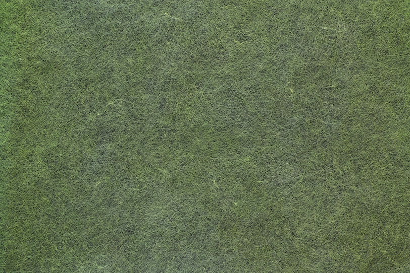 斑のある芝生の様な草色和紙の写真画像