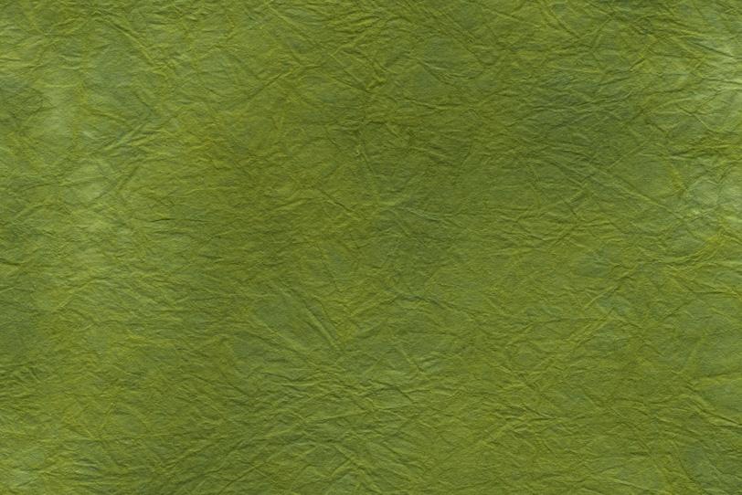 自然を感じる苔色の揉染和紙の写真画像