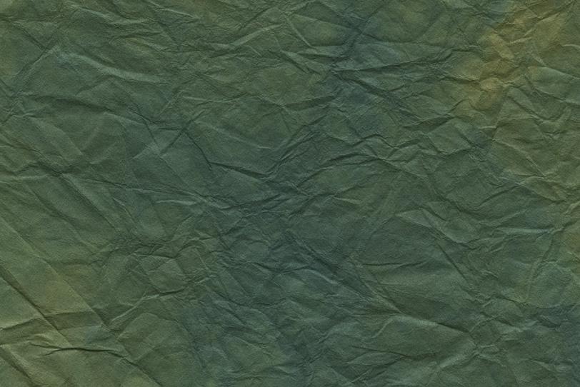 大きな葉に似た千歳緑の揉染和紙の写真画像