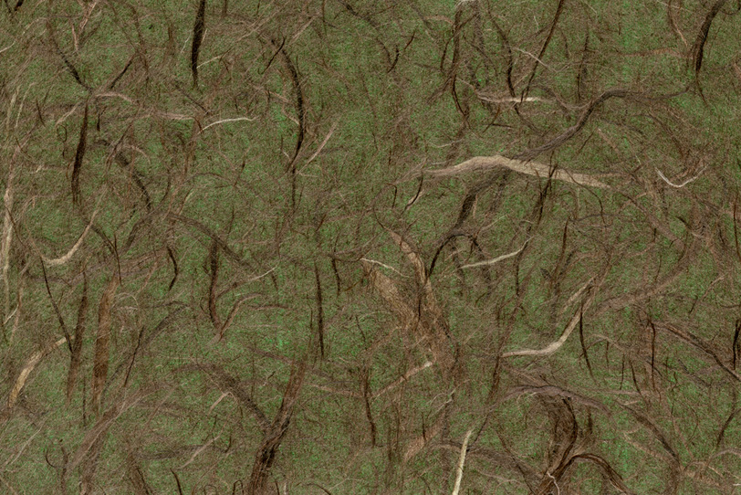 深い森のようなイメージの和紙の写真画像