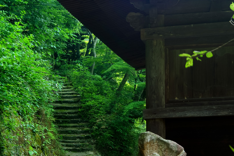 緑に囲まれた静寂の山寺の写真画像