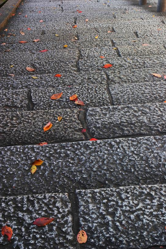 「落ち葉と古都の石階段」の素材を無料ダウンロード