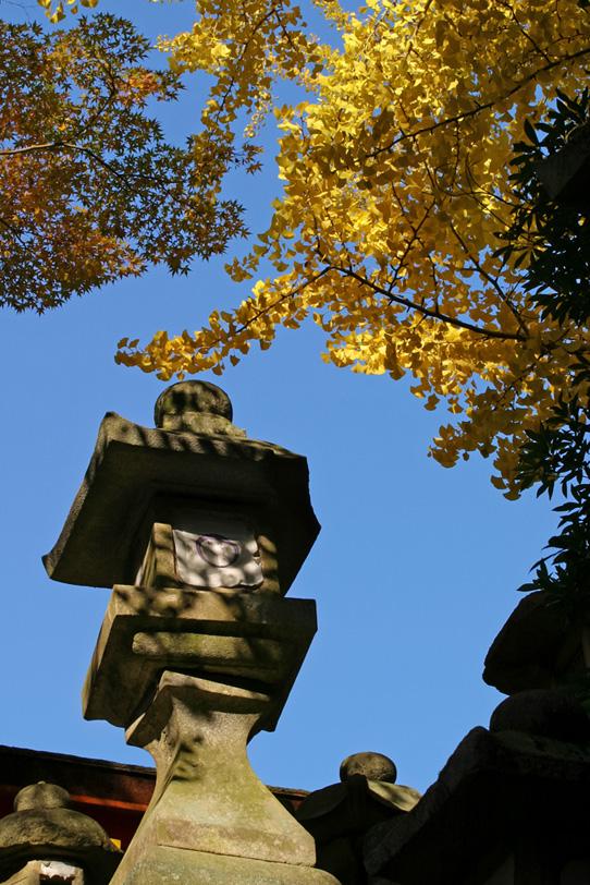 灯籠とイチョウと秋空の写真画像