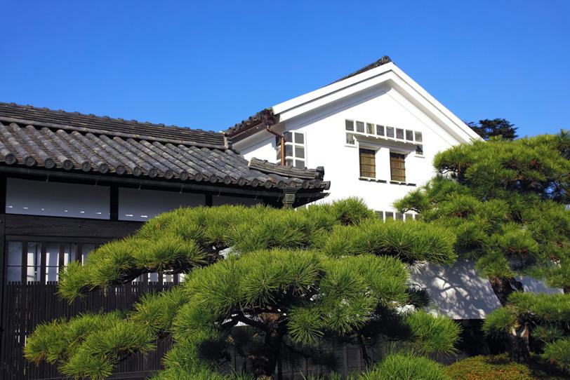 松と倉のある和風な家の写真画像