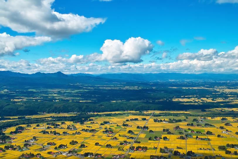 美しい初秋の田園風景の写真画像
