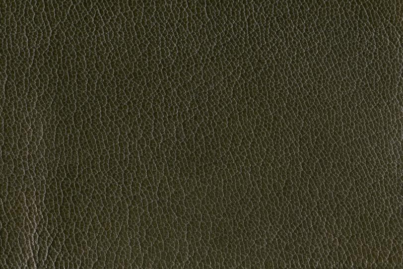 光沢のある滑らかな風合いの革の写真画像
