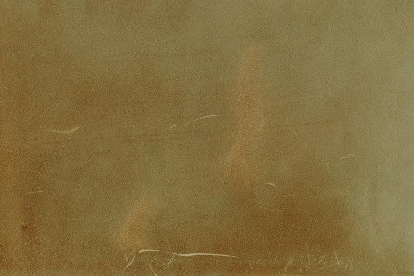 傷のある薄茶色のレザーの写真画像