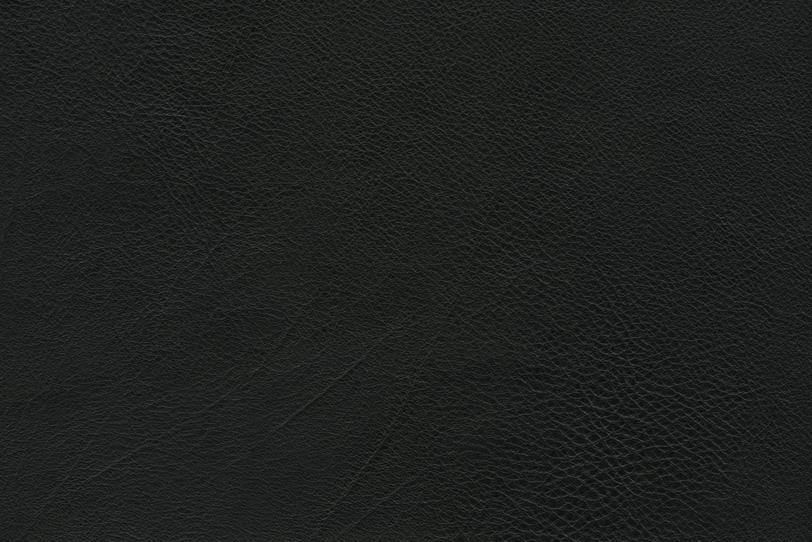 エンボス加工した革の写真画像