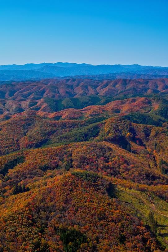 連なる山々が紅葉で赤く染まるの写真画像