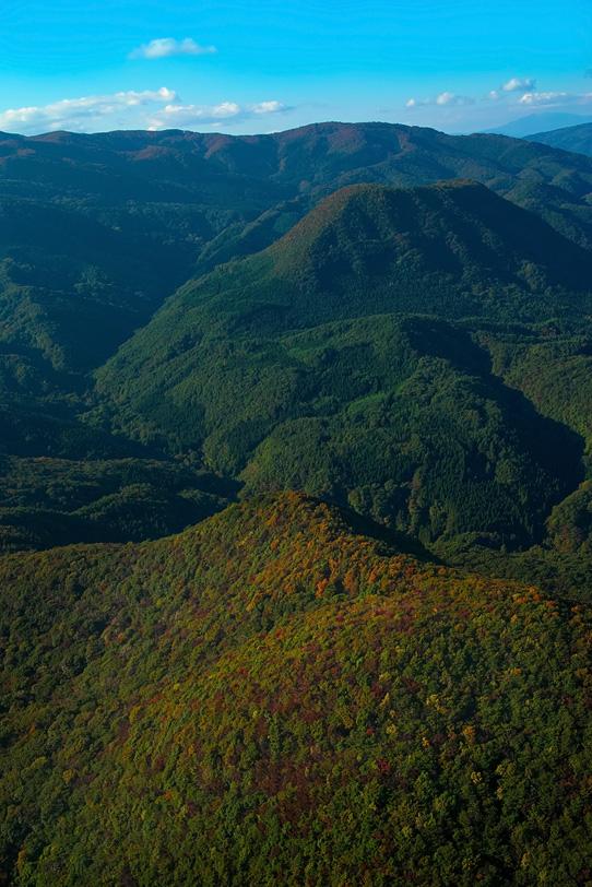木々が色づき始める秋の山の写真画像