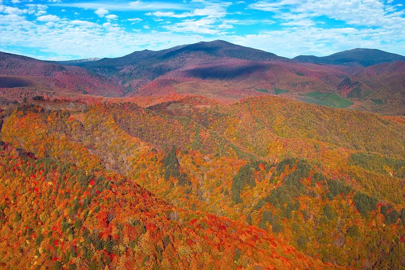 紅葉する山が連なる秋の風景の写真画像